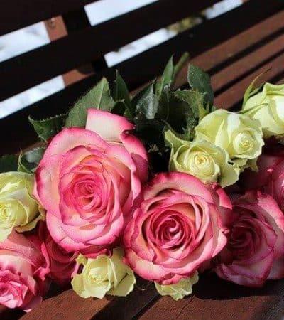 cancelar boda, cancelación boda coronavirus